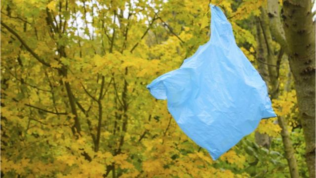 Video: Cleaning up plastic bags