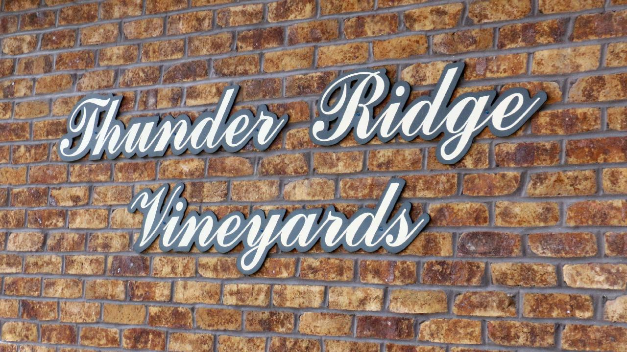 Jeff Gormley, owner and operator of Thunder Ridge Vineyards, gives a tour of the wine making process.