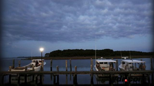 Watch: Trump Budget Cuts Funding for Chesapeake Bay Program