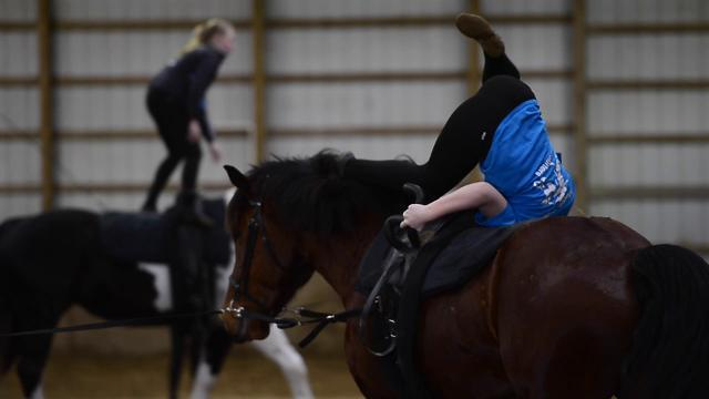 Watch: York's equestrian vault team