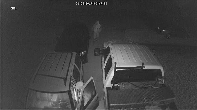 Two vehicle burglary suspects were recorded on a home security surveillance camera on Sea Lion Road in Port St. Lucie early Tuesday, Jan. 3, 2017.