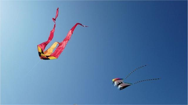 Padre Island National Seashore hosts 6th annual Kite Day