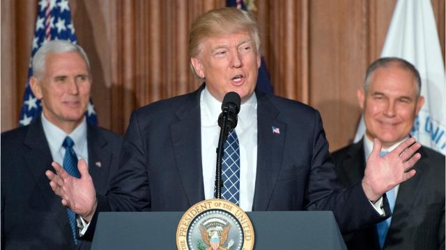 Donald Trump has proposed major cuts to the EPA budget and staff, and reductions in an array of environmental regulations, all of which could have significant impacts on New Jersey.