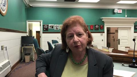 New Milford Mayor Ann Subrizi addresses proposed development of the 14-acre Suez tract.