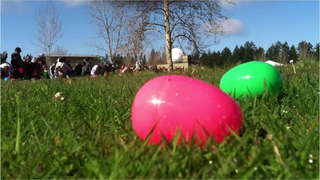 Children hunt Easter eggs at Battle Point Park on Bainbridge Island on April 15, 2017.