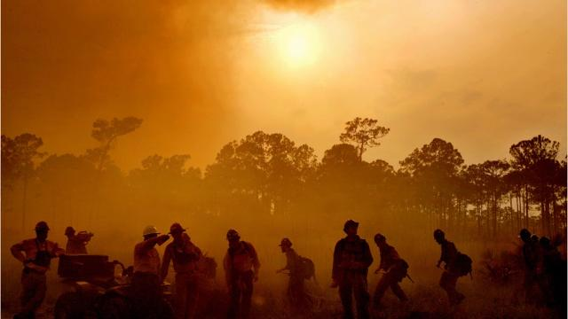 Largest Southwest Florida wildfires in the last 10 years