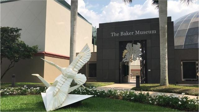 Artis—Naples is home to the famous Baker Museum which holds a diverse collection of art in 15 galleries. The museum focuses on modern and contemporary fine arts but also hosts many travel exhibitions that complement the permanent collections.