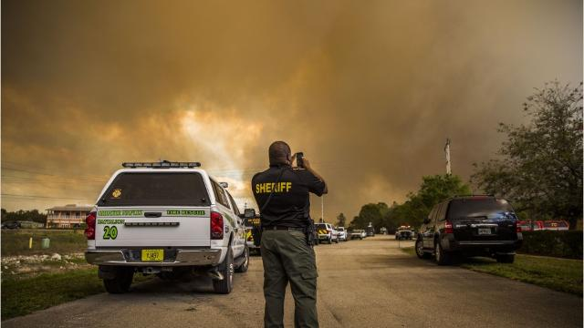 Brush fire in Collier County by the numbers
