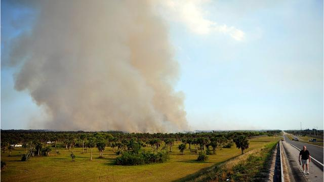 5 things to know about Collier brush fire