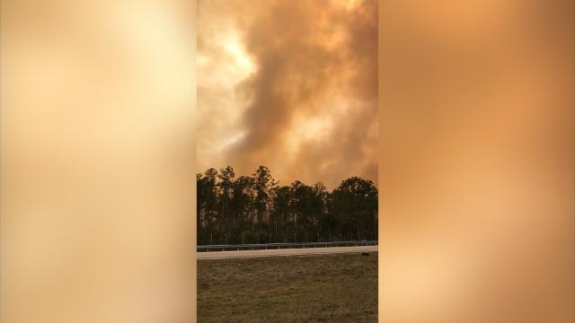 Brush fire nears I-75 in Collier County