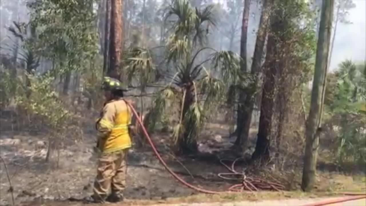 Video: Brush fire in North Naples