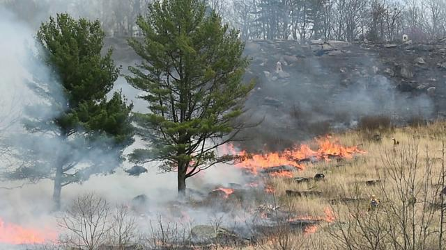 Gettysburg National Military Park burned through 52 acres on the west slope of Little Round Top, Monday. The burn helps kill underbrush and gives the battlefield an authentic look for visitors.