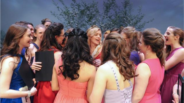 The 30 participants for the 2017 Distinguished Young Women of York County Program have been named.