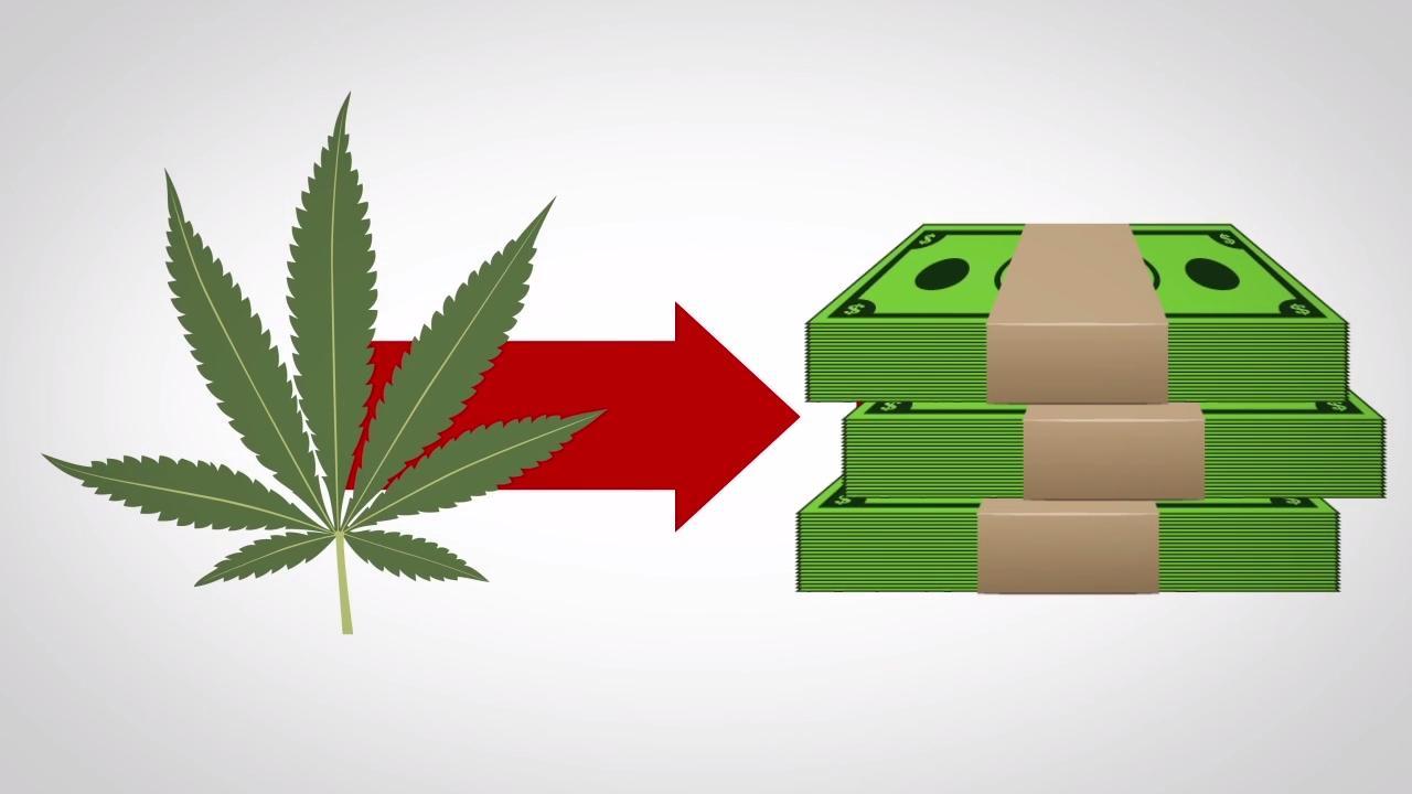 Watch: Where does medical marijuana money go?