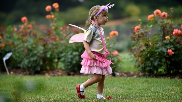 "For one morning Hershey Gardens transformed to ""A Whimsical Day of Fairies."" The annual event combines the gardens with costumed fairies and invites children to participate with their imagination to create a magical place."