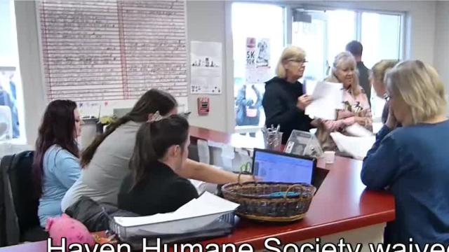 Haven Humane in Anderson waived pet adoption fees for the day to encourage people to adopt pets.