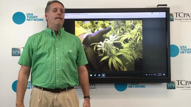 The Legislature is in the process of writing rules to govern how residents can get medical marijuana, from whom, and what form it will take. Is this what Floridians voted for? HANNAH SCHWAB/TREASURE COAST NEWSPAPERS