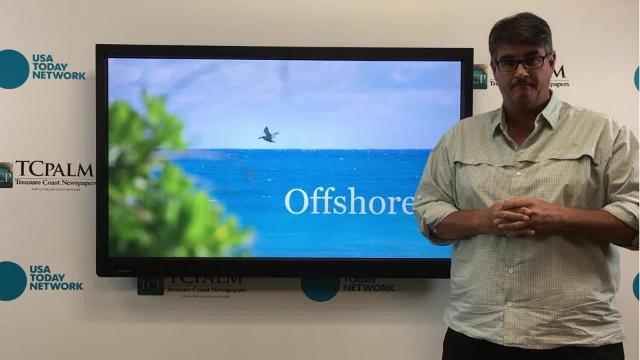 Outdoors reporter Ed Killer talks about the different species of grouper you can catch offshore this weekend.