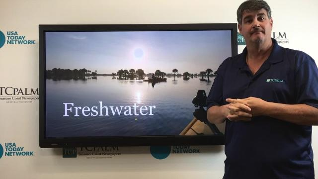 Outdoors reporter Ed Killer talks about what you can find if you fish in freshwater this weekend. HANNAH SCHWAB/TCPALM