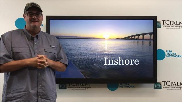 Outdoors reporter Ed Killer talks about what you can find if  you fish inshore this weekend.