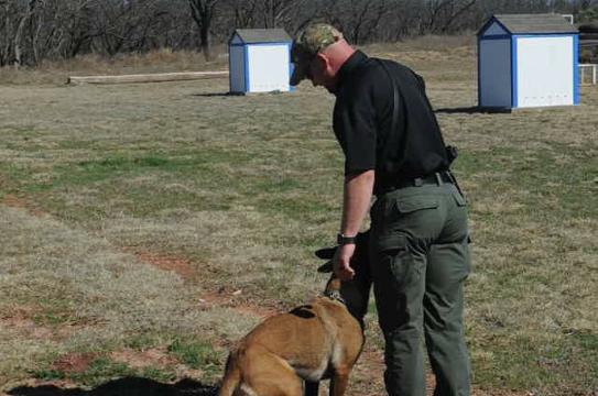 Abilene police K-9 demonstration.