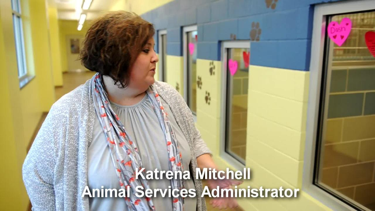 Wichita Falls Animal Services celebrated the opening of their new wing Tuesday morning.