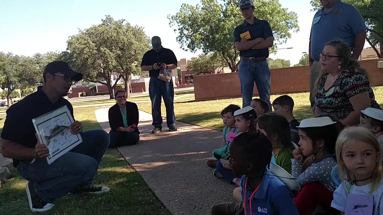 Students in Hardin-Simmons University's Exploration Station program learn about fish from Michael Homer, a fisheries biologist at Texas Parks and Wildlife.