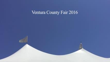 Ventura County Fair 2016