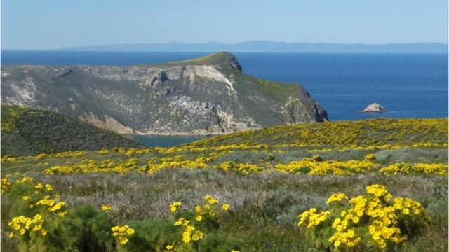 Channel Islands National Park Videppo